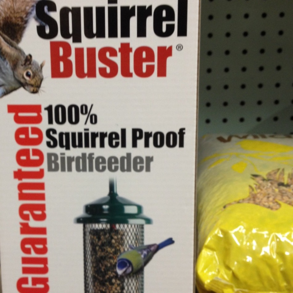 Squirrel Buster
