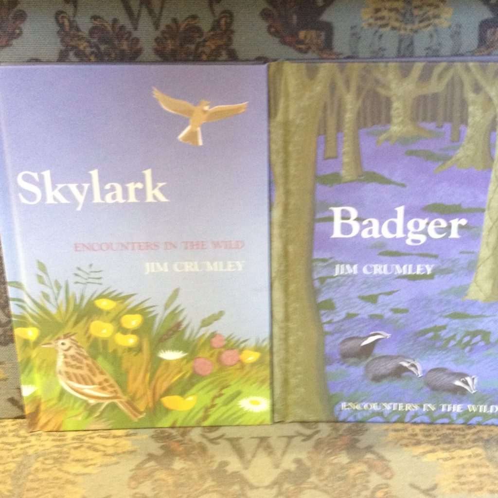 Skykark Badger